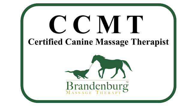 CCMT - Certified Canine Massage Therapist