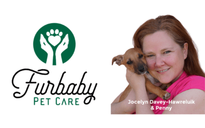 Gratitude and good news. Tales from inside Furbaby Pet Care.